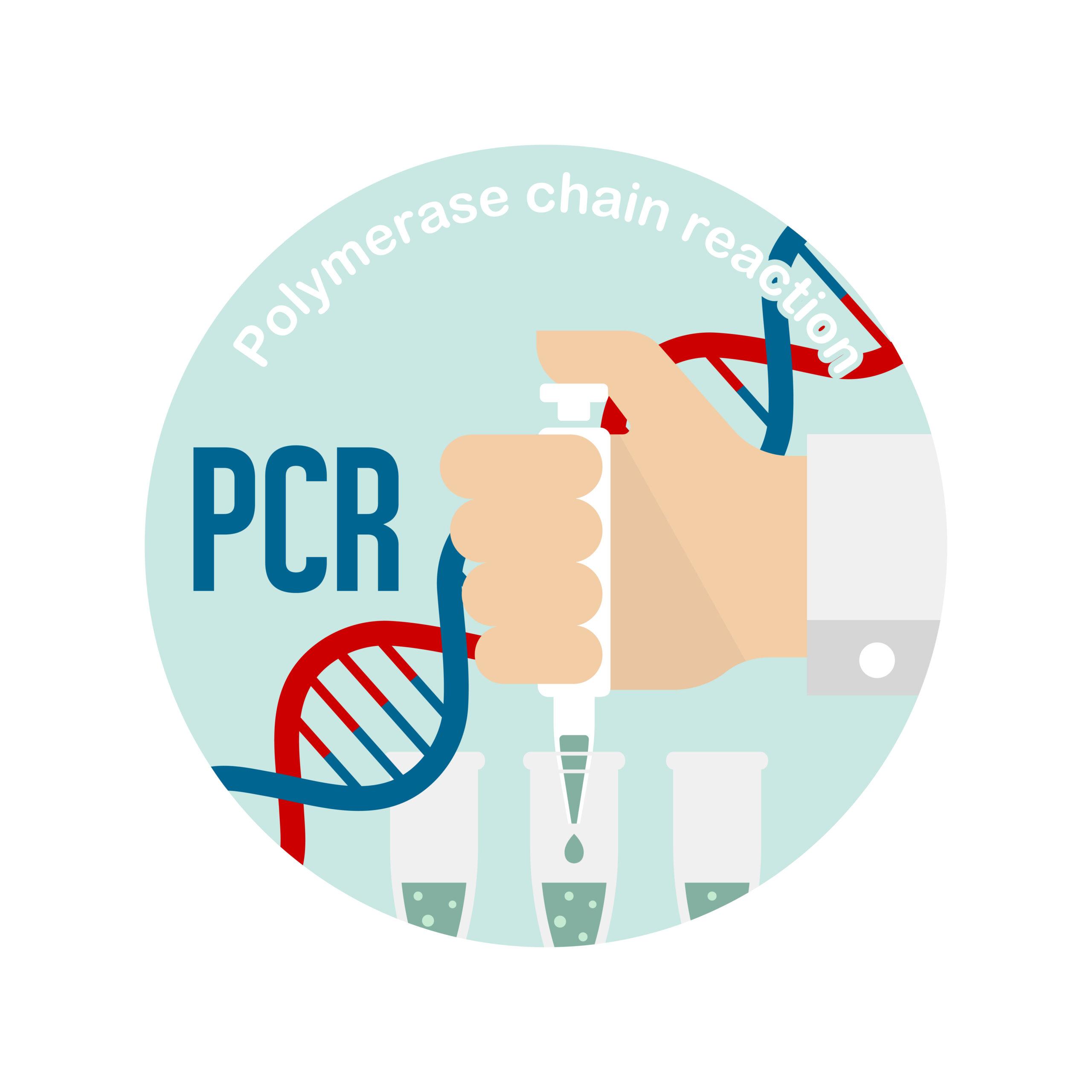 新サービス!「環境中の新型コロナウイルス定期PCR検査付き ステリクリアRR 抗ウイルス抗菌コーティングサービス」を開始